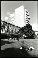 Student reading on Lehman Lawn, circa 1990