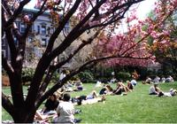 Students on Lehman Lawn in spring, circa 1990s