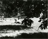 People relax on Lehman Lawn, 1967