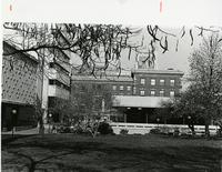 View of Lehman Lawn and Campus, 1979