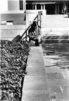 Student reading on campus, circa 1980