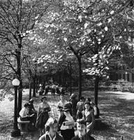 Students on path to Brooks Hall, circa 1950s