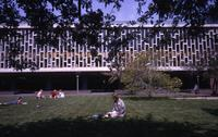 Students on Lehman Lawn, 1966