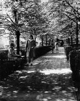 Students on pathway, 1944