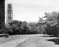 The Jungle and campus, looking north, 1944
