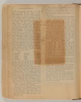 Edith Somborn Issacs Scrapbook, 1903-1906, page 42