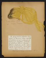 Grace R. Greenbaum Epstein Scrapbook, 1911-1913, page 4