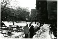 Lehman lawn in winter, circa 1990s