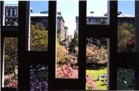 Lehman Lawn from Lehman Hall Windows, 2003