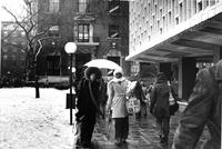 Rainy Day on Lehman Walk, circa 1970s