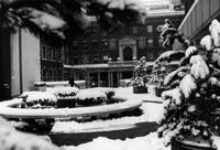 Milbank Hall in winter, circa 1970-1980